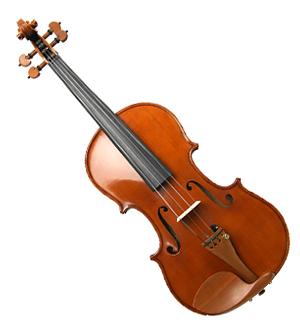 세광 바이올린 SVN-500