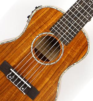 기타렐레 SGL-250 (Pick-up)